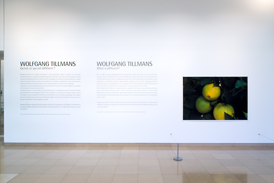 Wolfgang Tillmans, Carré d'Art-Musée d'art contemporain, Nîmes, France, 4 May - 16 September 2018 (Photos: Cédrick Eymenier)
